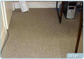 Custom Solutions Carpet Cleaning After