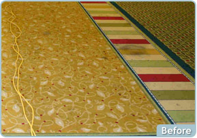 Custom Solutions Carpet Cleaning Before